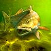My Fishing World - Realistic fishing 1.10.87