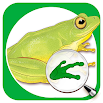 Sasol Young Explorer – Frogs 1.1.3