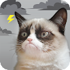 Grumpy Cat Weather 5.1.0
