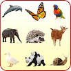 Animals for Kids 1.2
