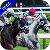 Flat Race Horse Racing 1.43
