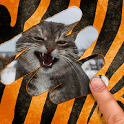 Scratch and guess the animal 9.2