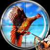 Pheasant Bird Hunting: Wings Sniper Shooting 2018 1.0