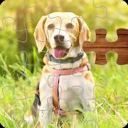 Magic Jigsaw Puzzle 1.0