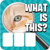Zoom Pic: Close Up Picture Quiz 2.0.1