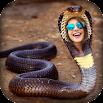Snake Photo Frame - New Version 1.0.0.1.3