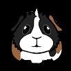 My Guinea Pigs: Reliable Pet Health Care Advice 4.6.0