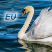 Nature Free - Europe 3.9