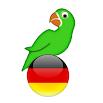 Learn German from scratch full 15.4