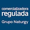 C. Regulada Clientes 1.0.3.1