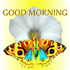 Good Morning Messages 3.5.7