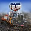 Big Rig Racing 6.10.0.193