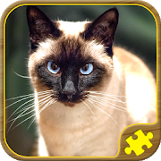Cat Jigsaw Puzzles 57.0.0