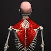 Anatomy by Muscle & Motion 2.2.4