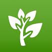 Medicinal Plants & Remedies 1.56.271