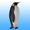 Flying penguin 1.25