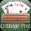 Cribbage Pro 2.7.18